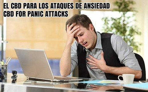 El CBD para Ataques de Ansiedad