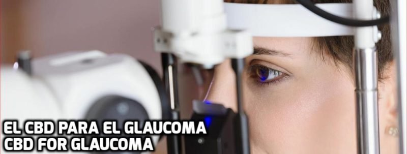 El CBD para el Glaucoma