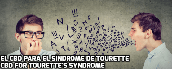 El CBD para el Síndrome de Tourette