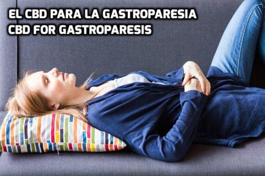 El CBD para la Gastroparesia
