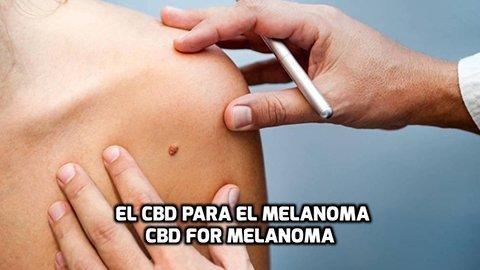 El CBD para el Melanoma