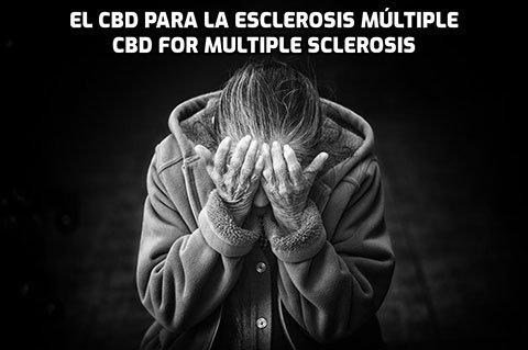 El CBD para la Esclerosis Múltiple