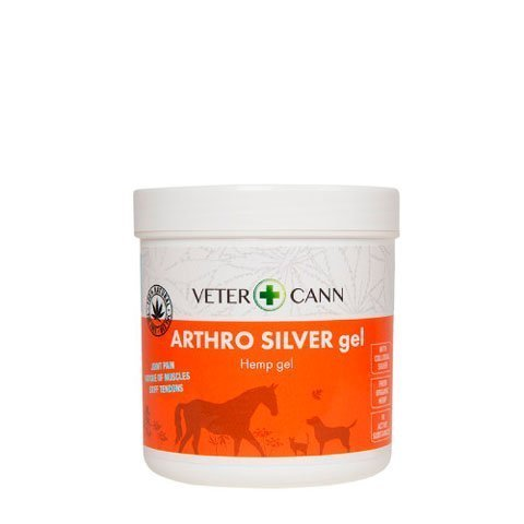 Arthro Hemp Gel for Pets
