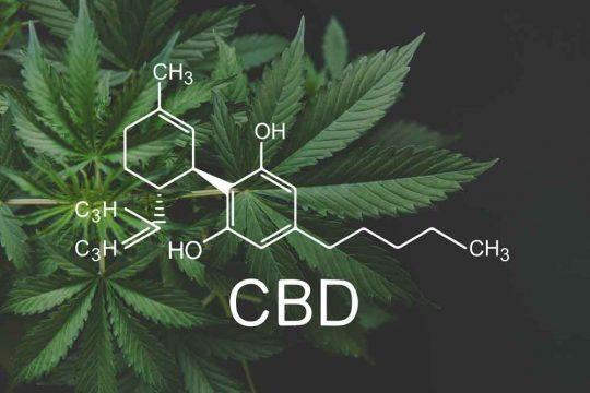 CBD formula