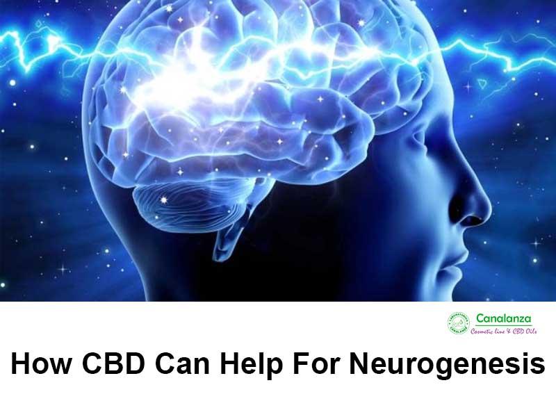 How CBD can help for Neurogenesis